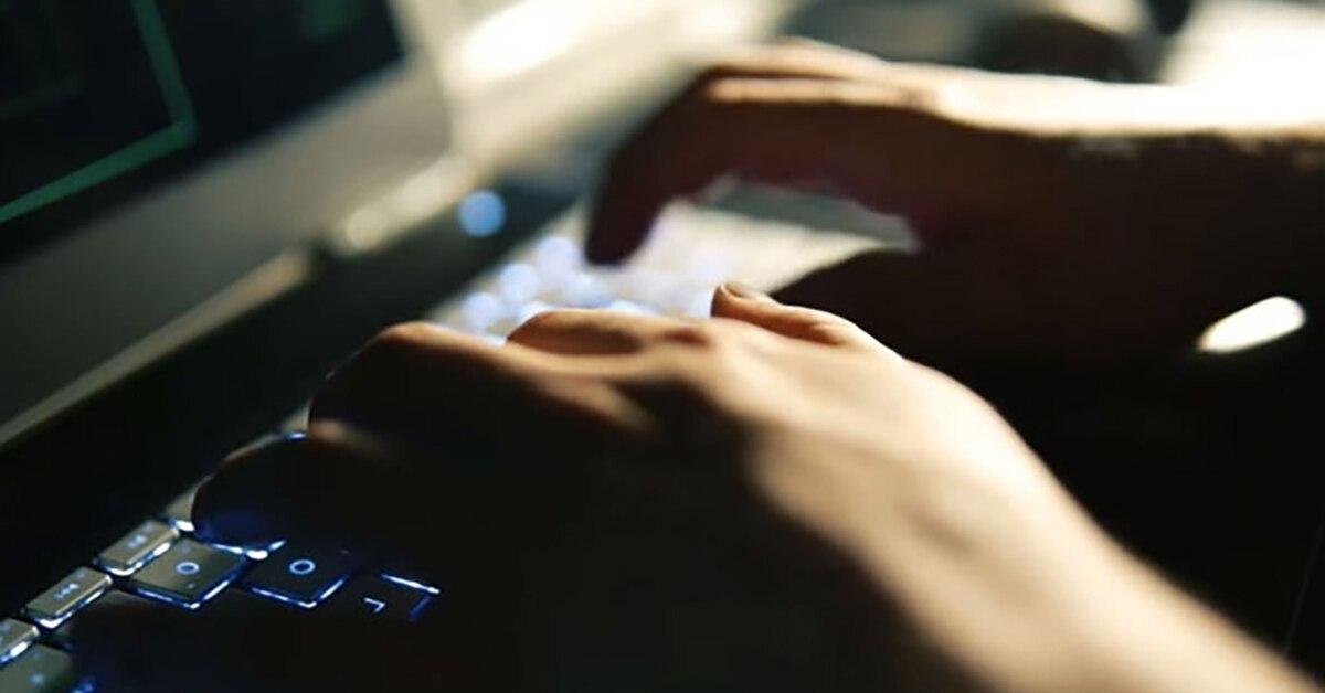 12NEWS: СёрчИнформ (SearchInform) :: Эксперт «СёрчИнформ» провел обучение по кибербезопасности для представителей правоохранительных органов