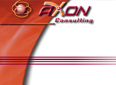 12NEWS: АКСОН-Консалтинг :: Управление финансами торгового холдинга NRG group на платформе Microsoft Dynamics AX