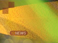 12NEWS: ComNews :: Лучшие 10 ИТ-проектов для госсектора