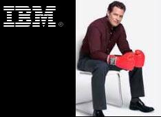 IBM считает, что в истории SOA  настал переломный год