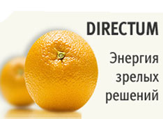 Первый партнер DIRECTUM в Краснодаре