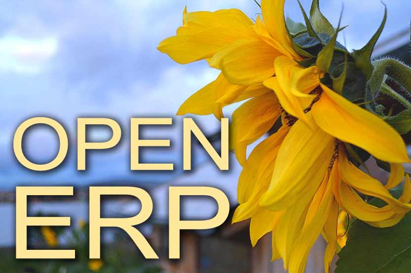 ERP-системы с открытым исходным кодом